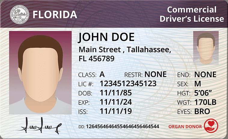 Cdl Florida