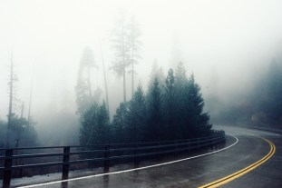 5 Things to look out for when driving road-fog-bend-foggy