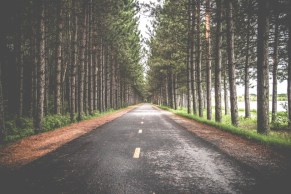 5-Things-to-look-out-for-when-driving-think-ahead-on-the-road