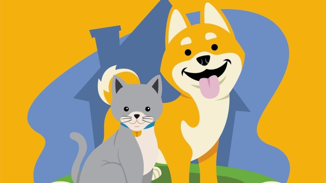 Cats and Doge