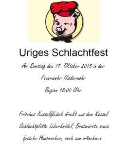 Flyer Schlachtfest Niedermohr 2015