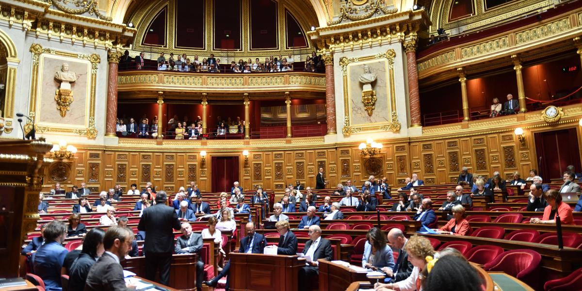 Le Sénat fait un pas de plus vers la PMA pour toutes mais écarte l'extension du délai de l'IVG