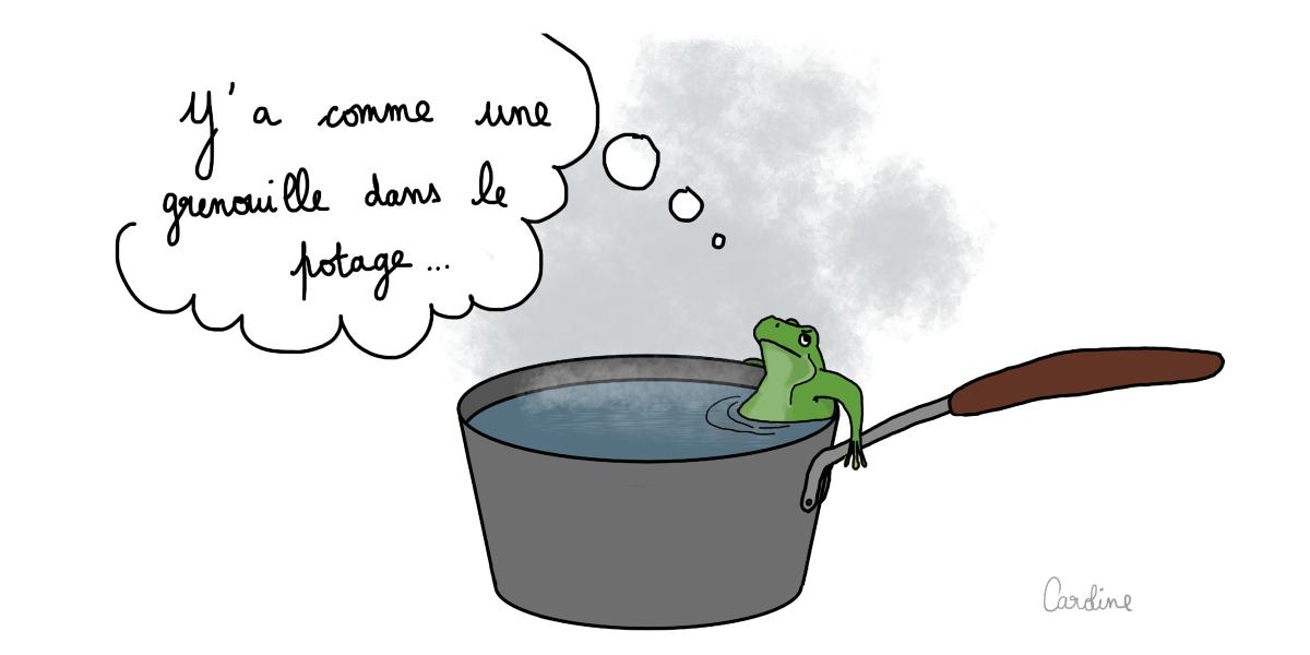 Quand la conscience s'engourdit… ne soyez pas grenouille !