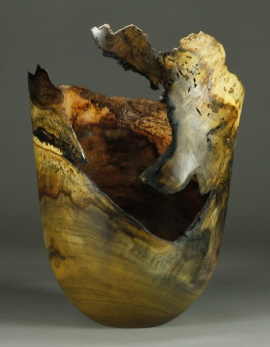 "#62. Jones Tulip Poplar Burl 11 1/2"" dia. x 15 1/2"" tall sold"
