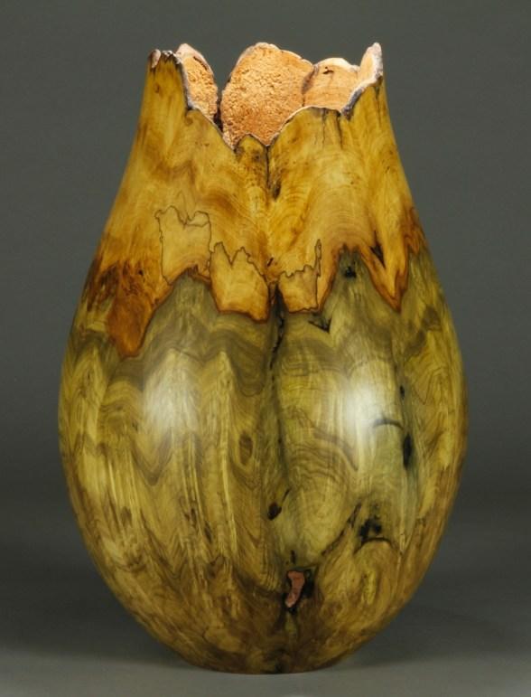 "#66. Jones Tulip Poplar Burl 10 1/2"" dial x 15 3/4"" tall"