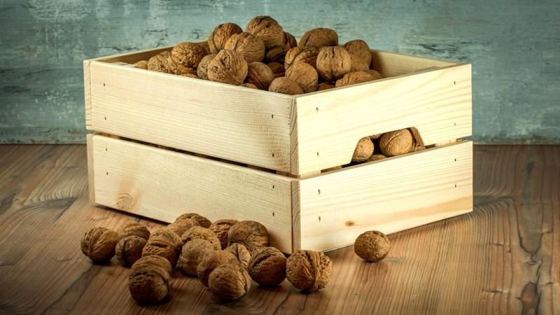 nuts-1213037_1280