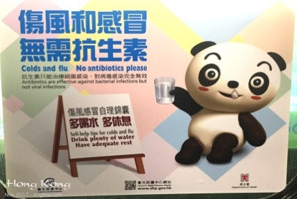 You know you live in a place with too much illness when they have to place ads like this on the subway. We were so sick in November that I feel great empathy for this poor panda, who so graphically needs a tissue!