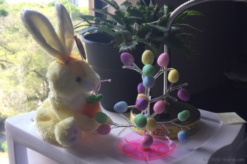 Vivian kicked off our Easter season by finding decorative items in our boxes (or in local stores). Bunnies and colored eggs are common Easter decorations.