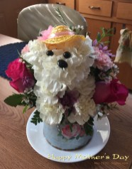 Unable to visit my Mom in Ohio, we sent these cute flowers, to celebrate with her and her new puppy!