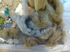 grey and brown wool swirling around a tall structure made of corrugated brown paper set amongst sand, pebbbles moss and a small blue feather