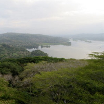 Linking functional diversity with soil carbon dynamics in secondary tropical forests 400 x 400 px