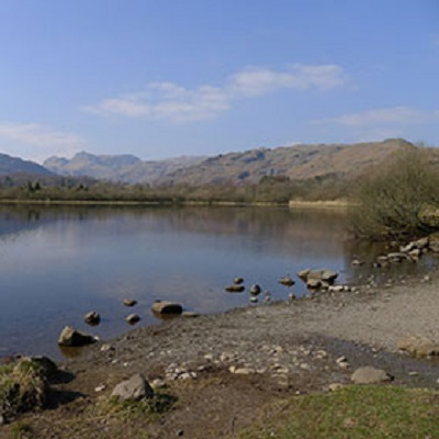 Working with natural processes to restore lake habitats