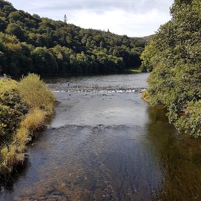What lies beneath: biofilm fingerprints for nutrient inputs to rivers