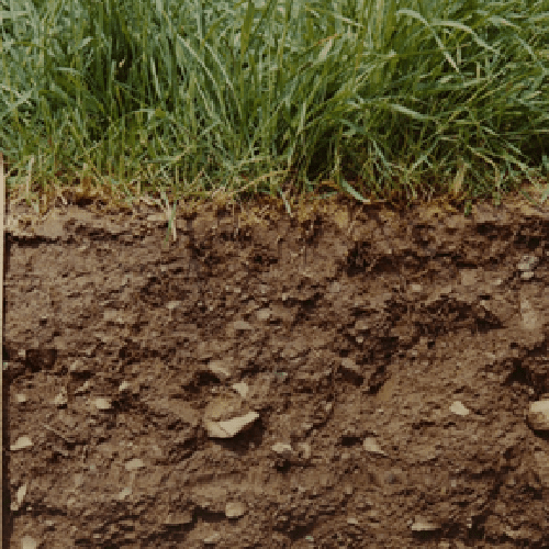Soil microbes to mitigate climate change