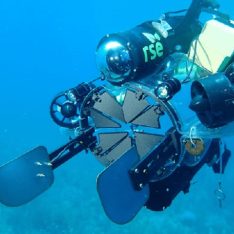 Aliens in the twilight zone: using robots to study and manage invasive lionfish on Caribbean mesophotic coral ecosystems