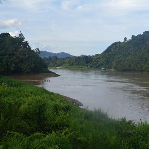 Drivers of tropical freshwater biodiversity: a DNA metabarcoding approach