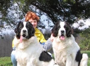 Josy (links im Bild) Arantxa (rechts im Bild)