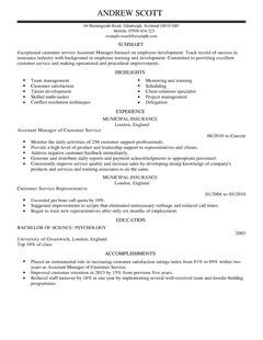 Customer Service Template Customer Service Manager Resume Sample