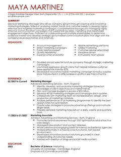 food sales resume sample all marketing cv samples account manager
