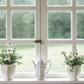 window-flowers