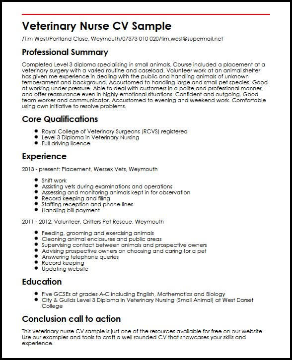 Sample Of Perfect Curriculum Vitae. Exhilarating How To Make A