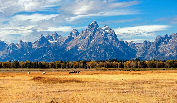 Video: grand teton national park getaway | latest news live | find the all top headlines, breaking news for free online february 16, 2021