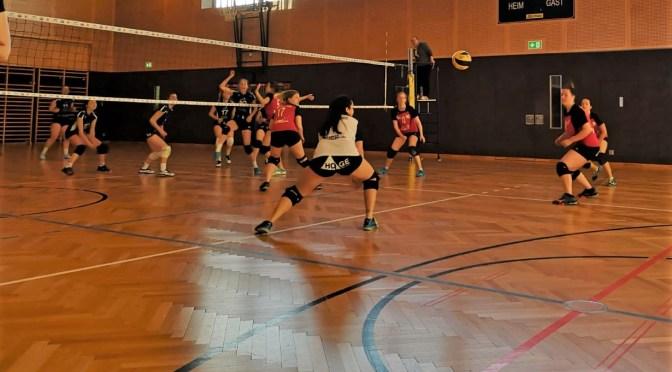 11teamsports 1. NÖ LL Damen / Nibelungengau – Melk 2:3