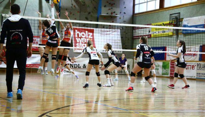 2. Bundesliga Damen / Purgstall gegen Weiz – Erfolgslauf geht weiter!