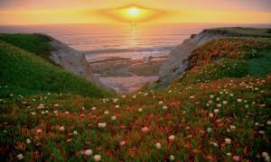 Earthday Embrace by Steve Jurvetson