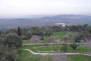 The fields of Galilee, as seen from Mt. Tabor...