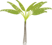 gbig95_palm_tree.png