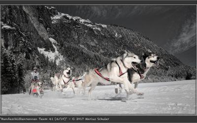 2017-07: Hundeschlittenrennen