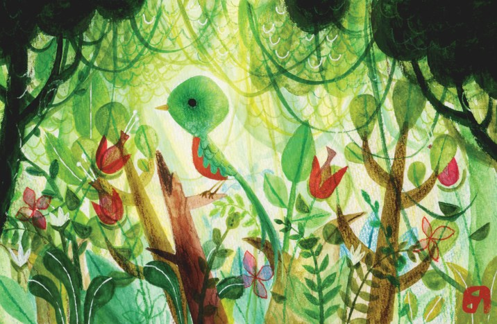 Painting of a quetzal perched on branch in jungle, the national bird of Guatemala.