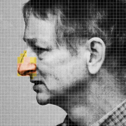 Hinton face grid