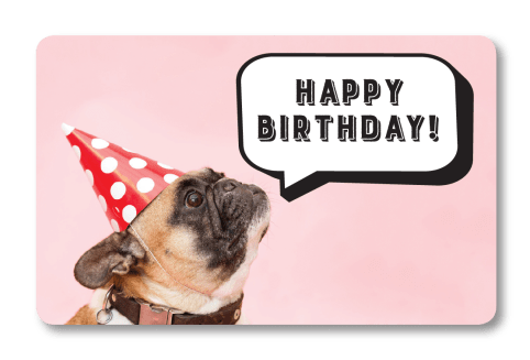 Birthday Gift Dog Card