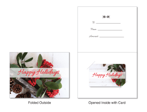 Holiday Holly: Large Folded Carrier