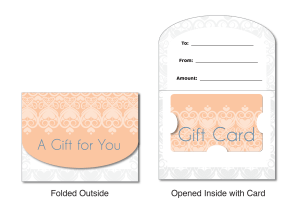 General Gift Lace: Small Folded Carrier