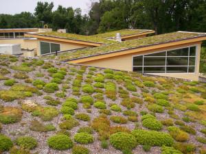 Begrünte schräge Dächer, © Arlington County via Flickr