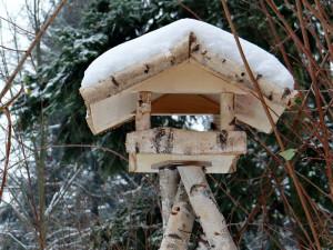 Futterhäuschen im Landhausstil, das teilweise aus Birkenholz gebaut wurde, © Schreib-Engel / Pixabay