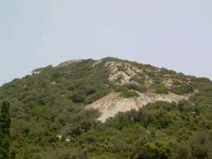 Über den Felsen von Gibraltar kann man während der Zugzeiten zahlreiche Zugvögel beobachten, © Allan Watt via Flickr