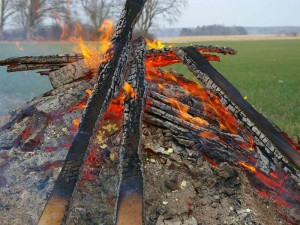 So manches Osterfeuer wird für Wildtiere zum Scheiterhaufen, © Skullman / Pixabay