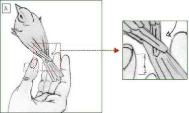 Abb. 3: An dieser Stelle muss der Klebestreifen angebracht werden.