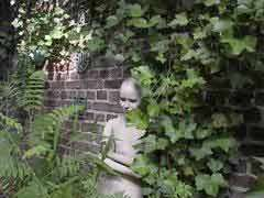 Bewachsene Mauer im Garten, © Hilu Lalic