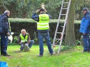 Bei Nistkasten-Pflegemaßnahmen auf öffentlichen Grundstücken sind Helfer oft willkommen, © Claus Walter