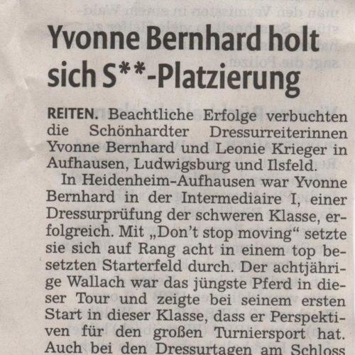 08 - Remszeitung vom 6.6.2015
