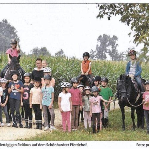 13 - Remszeitung vom 29.08.2015