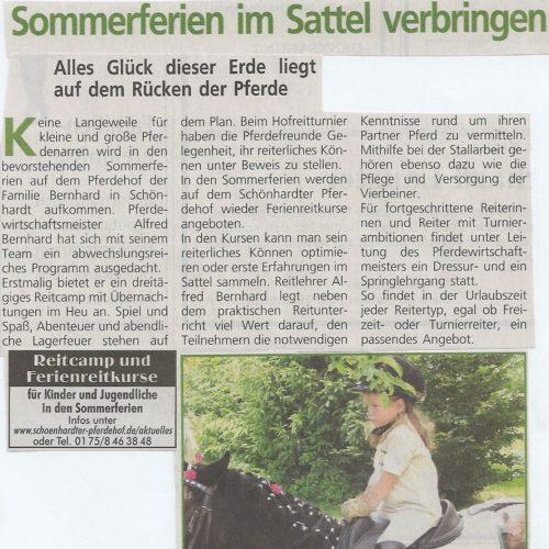 Rems-Zeitung vom 18.07.2008