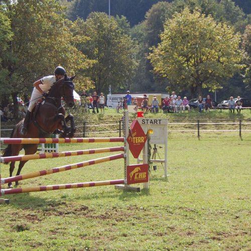 Reitturnier Lorch 2011 06.09.2011 22-09-35