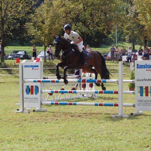 Reitturnier Lorch 2011 06.09.2011 22-09-48