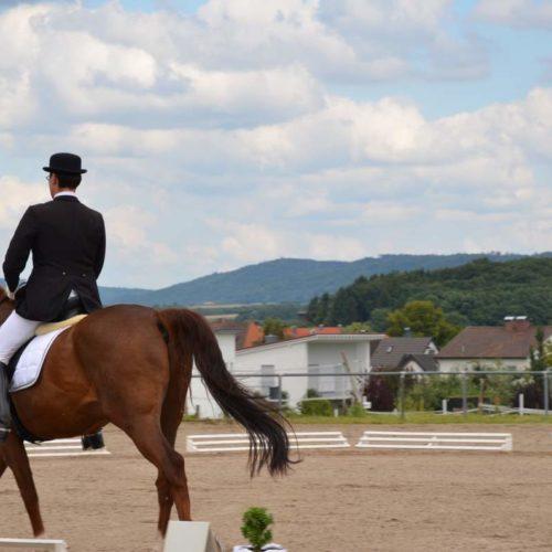 Reitturnier Moegglingen 23.07.2011 15-02-39